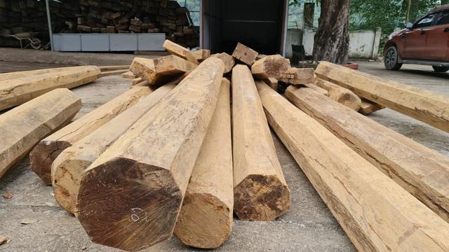 Cả trăm m3 gỗ quý nằm vạ vật chờ... hỏng tại Ban quản lý rừng - 8