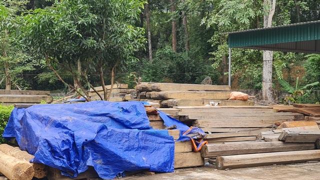 Cả trăm m3 gỗ quý nằm vạ vật chờ... hỏng tại Ban quản lý rừng - 4
