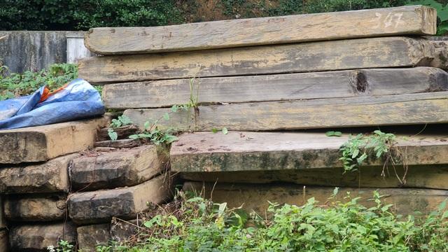Cả trăm m3 gỗ quý nằm vạ vật chờ... hỏng tại Ban quản lý rừng - 3