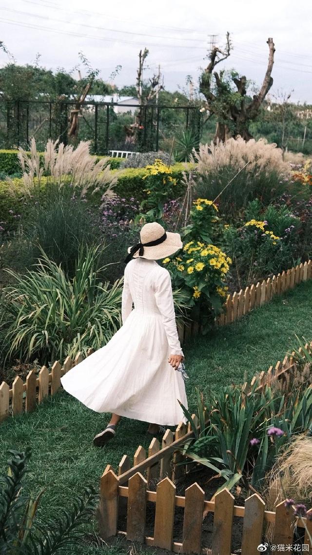 Bán nhà thành phố, vợ chồng về quê biến đất hoang thành vườn ngập hoa lá - 7
