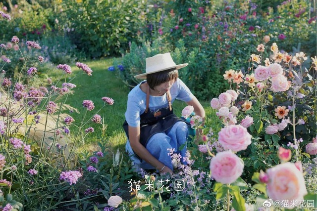 Bán nhà thành phố, vợ chồng về quê biến đất hoang thành vườn ngập hoa lá - 3