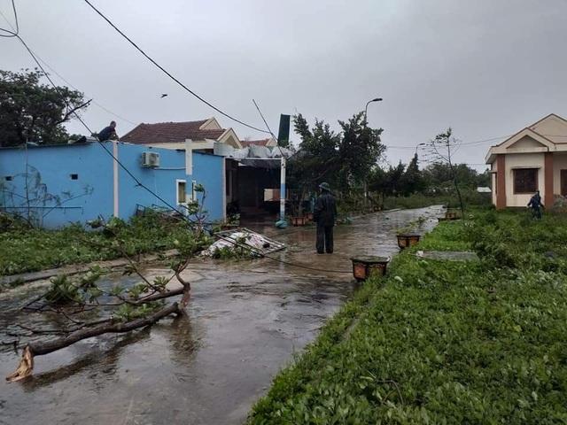 Đảo Cồn Cỏ hứng bão số 13 nặng nhất, nhà tốc mái, cây đổ ngổn ngang - 3