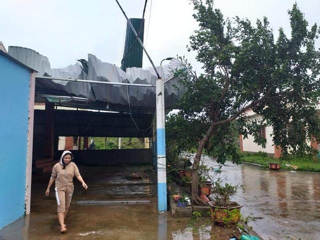 Đảo Cồn Cỏ hứng bão số 13 nặng nhất, nhà tốc mái, cây đổ ngổn ngang - 2