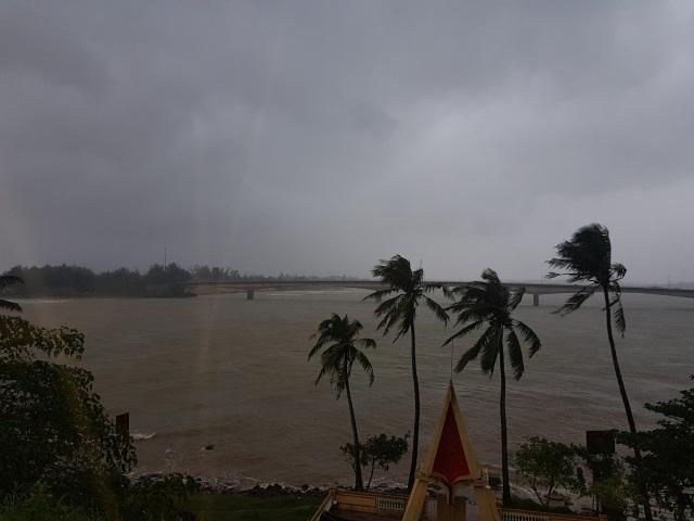 bão số 13
