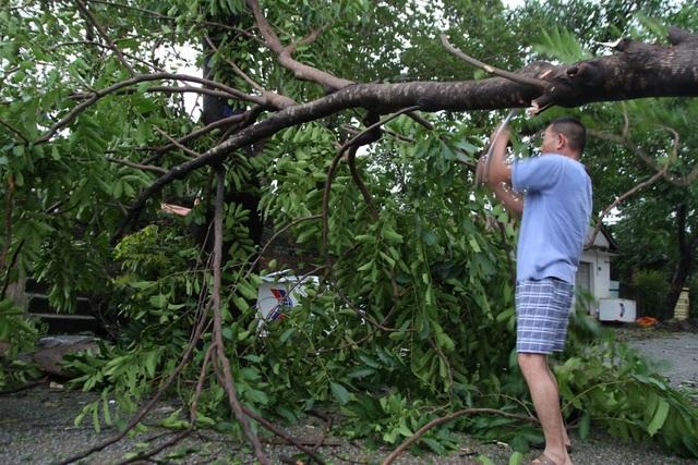 Tàu chìm, nhà sập, trường học tốc mái, cây xanh ngã đổ trong bão số 13 - 25