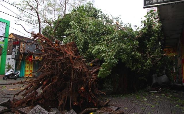 Tàu chìm, nhà sập, trường học tốc mái, cây xanh ngã đổ trong bão số 13 - 17