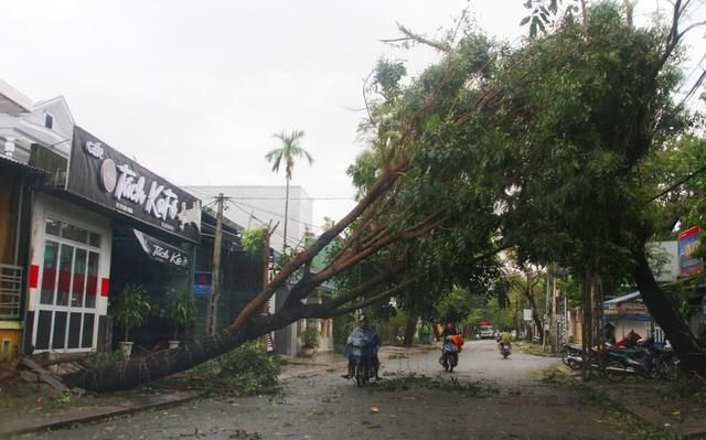 Tàu chìm, nhà sập, trường học tốc mái, cây xanh ngã đổ trong bão số 13 - 13
