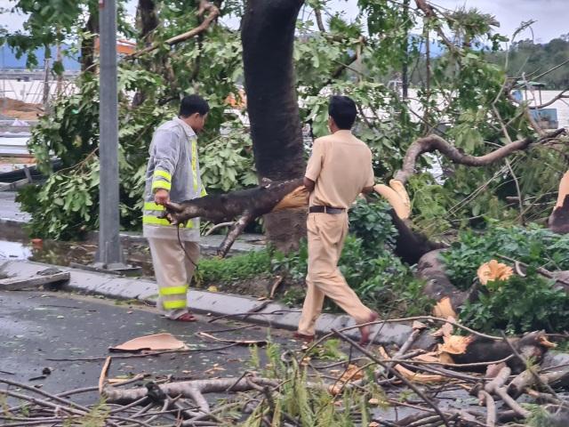 Tàu chìm, nhà sập, trường học tốc mái, cây xanh ngã đổ trong bão số 13 - 26