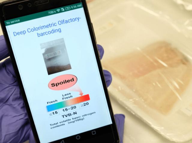 Công nghệ mũi điện tử giúp AI ngửi được thực phẩm - 1