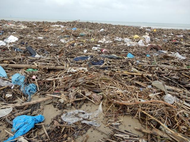 Lượng rác khổng lồ bịt kín bờ biển Đà Nẵng sau bão 13 - 8