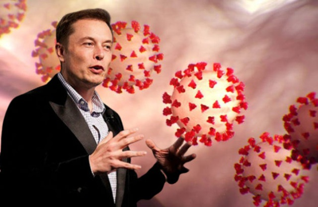 Dương tính SARS-CoV-2, Elon Musk vẫn lên Twitter thách thức dịch bệnh - 1