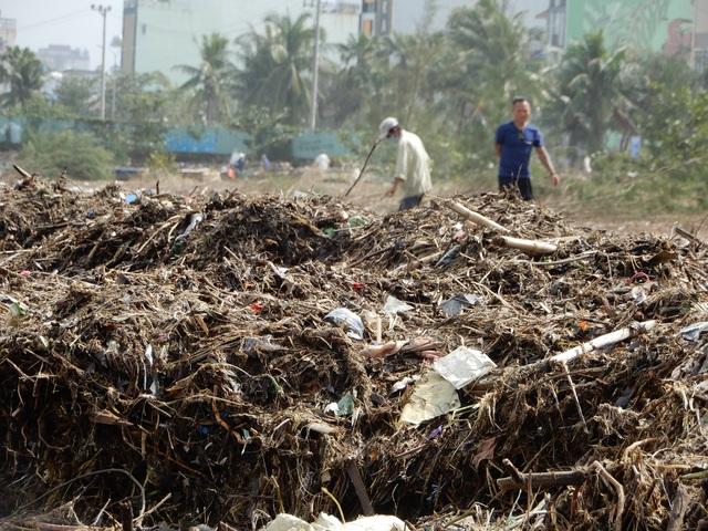 Lượng rác khổng lồ bịt kín bờ biển Đà Nẵng sau bão 13 - 7