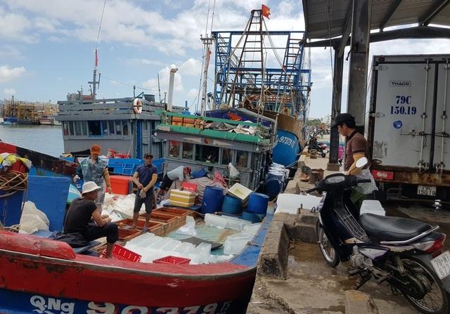 Khánh Hòa: Ngư dân hối hả vươn khơi Trường Sa sau bão số 13 - 1