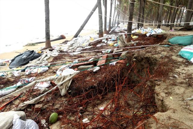 Du khách tiếc nuối khi các bãi biển du lịch tại Hội An dần biến mất - 7