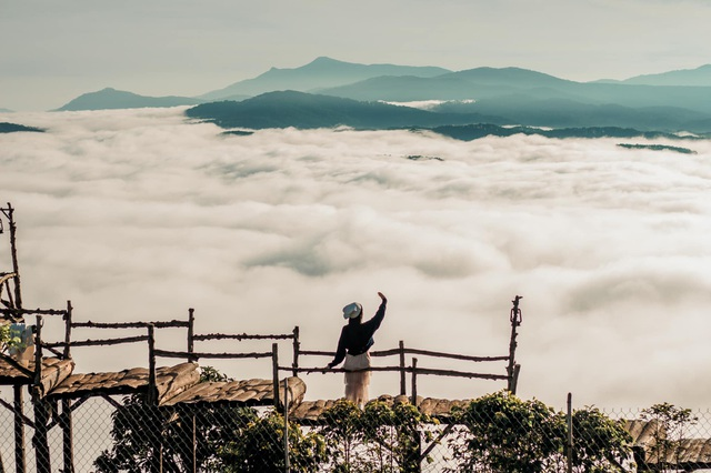 Hundreds of tourists lined up from 5 am to hunt for clouds in Dalat - 10
