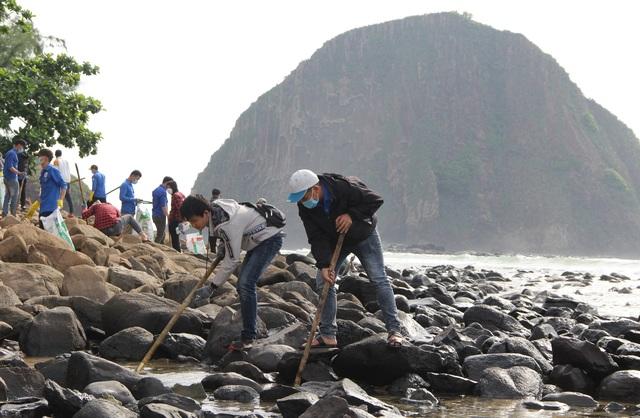 Phú Yên chi gần 3,2 tỷ đồng để bảo tồn danh thắng Hòn Yến  - 2