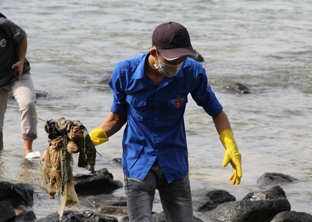 Phú Yên chi gần 3,2 tỷ đồng để bảo tồn danh thắng Hòn Yến  - 3