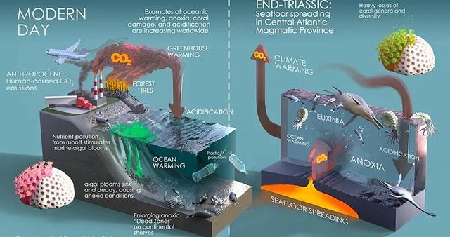 Nhận định mới về sự kiện tuyệt chủng hàng loạt chấm dứt Kỷ Tam điệp - 2
