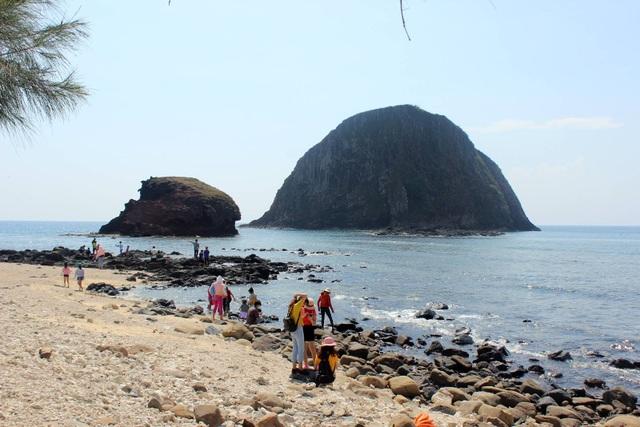 Phú Yên chi gần 3,2 tỷ đồng để bảo tồn danh thắng Hòn Yến  - 1