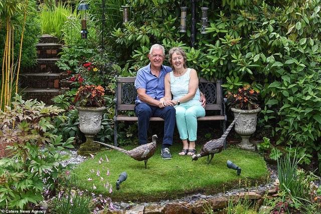 """""""Thiên đường"""" của vợ chồng U70 với loạt cây từ khắp nơi trên thế giới - 4"""