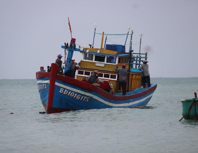 """Ngư dân Bình Định hối hả ra khơi kiếm """"lộc"""" biển, sau bão - 6"""
