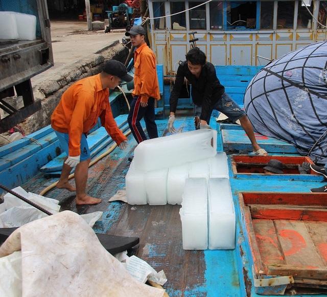 """Ngư dân Bình Định hối hả ra khơi kiếm """"lộc"""" biển, sau bão - 5"""