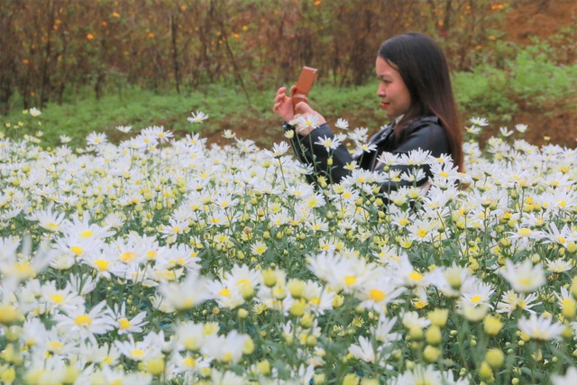 Chrysanthemum garden attracts thousands of people who come to take pictures and do not want to return to Ninh Binh - 12
