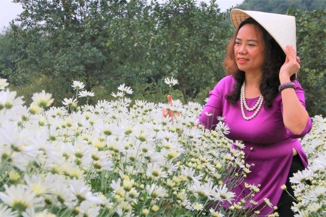 Vườn cúc họa mi nghìn người mê, đến chụp ảnh không muốn về ở Ninh Bình - 6