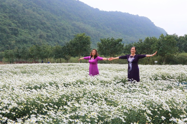 Chrysanthemum garden attracts thousands of people who come to take pictures and do not want to return to Ninh Binh - 3