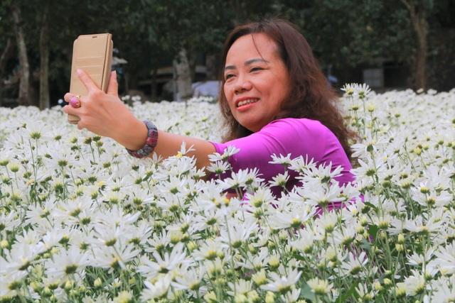 Vườn cúc họa mi nghìn người mê, đến chụp ảnh không muốn về ở Ninh Bình - 11