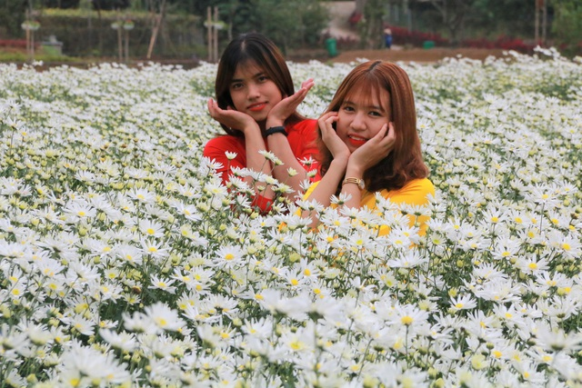 Chrysanthemum garden attracts thousands of people who come to take pictures and do not want to return to Ninh Binh - 4