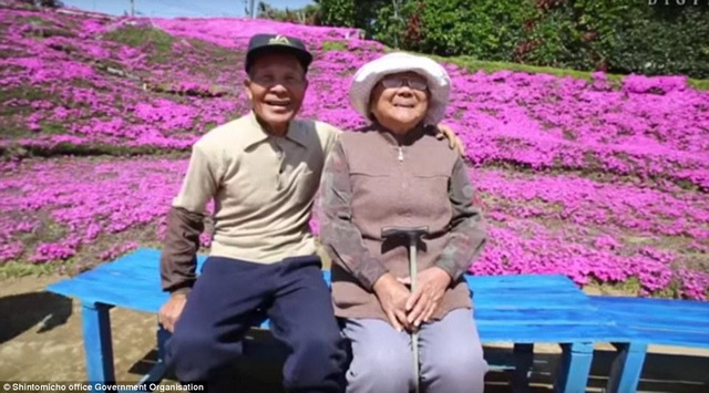 Vườn hoa đẹp như cổ tích của người đàn ông dành 10 năm trồng tặng vợ - 1