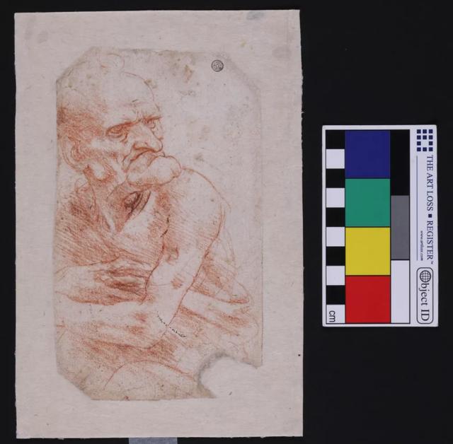 Vi khuẩn và nấm kỳ lạ được phát hiện trên bản vẽ của Leonardo da Vinci - 1