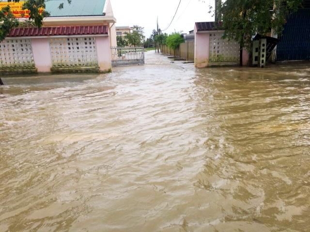 Bão lũ dồn dập, Đại học Huế thiệt hại nặng nề - 4