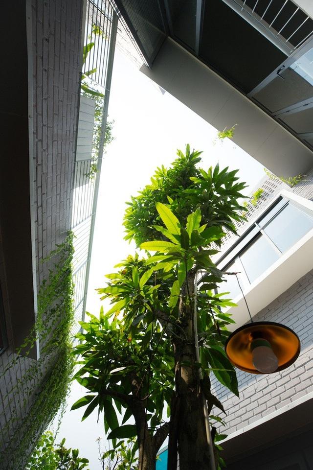 Ngôi nhà có 6 khoảng sân vườn, đẹp như tứ hợp viện ở Đà Nẵng - 9