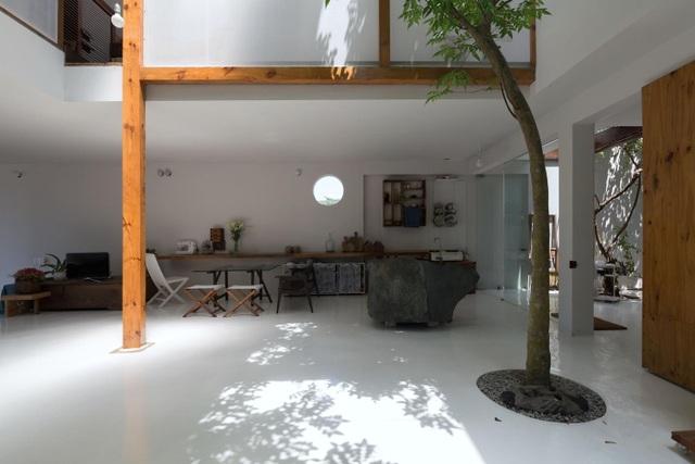 Ngôi nhà xây một nửa tiết kiệm chi phí độc đáo của vợ chồng ở Huế - 5