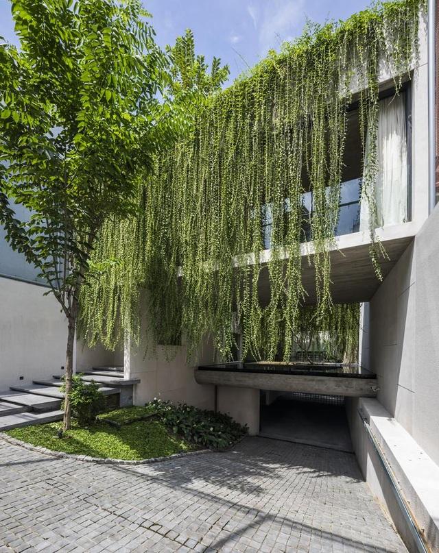 Ngỡ ngàng với biệt thự đẹp như công viên nhờ vườn cây xanh mát  - 2