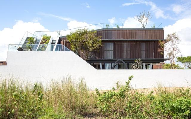 Vợ chồng ở Đà Nẵng đổ đất làm vườn tuyệt đẹp trên sân thượng căn biệt thự - 2
