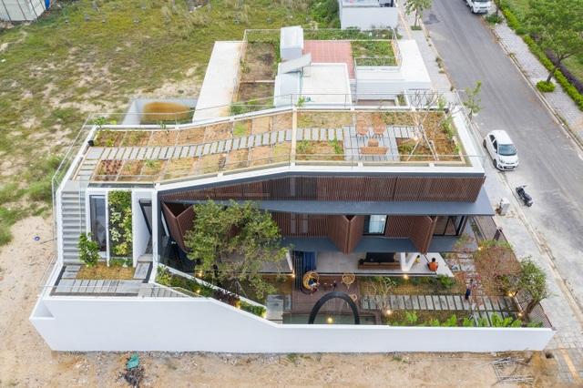 Vợ chồng ở Đà Nẵng đổ đất làm vườn tuyệt đẹp trên sân thượng căn biệt thự - 3