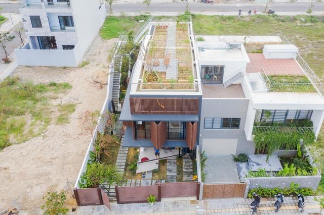 Vợ chồng ở Đà Nẵng đổ đất làm vườn tuyệt đẹp trên sân thượng căn biệt thự - 9