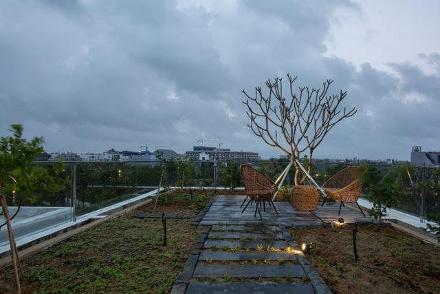 Vợ chồng ở Đà Nẵng đổ đất làm vườn tuyệt đẹp trên sân thượng căn biệt thự - 11