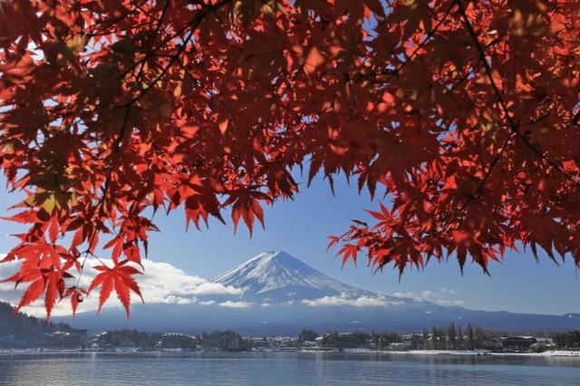 Những cảnh sắc hiếm có khó tìm ở nước Nhật tháng 11 - 3