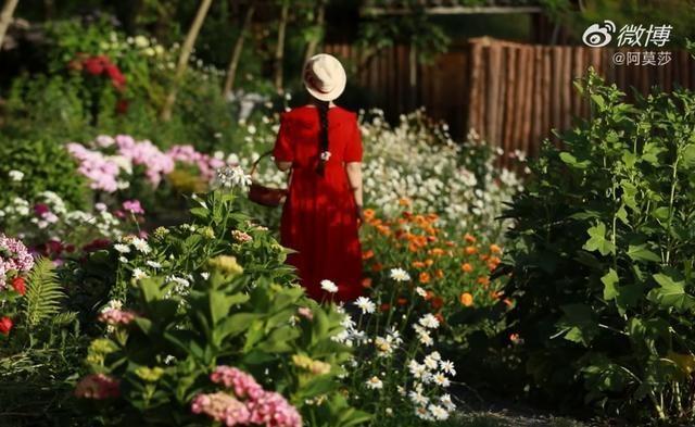 Cuộc sống như mơ của cô gái bỏ bộn bề thành phố về quê làm vườn trồng hoa - 2