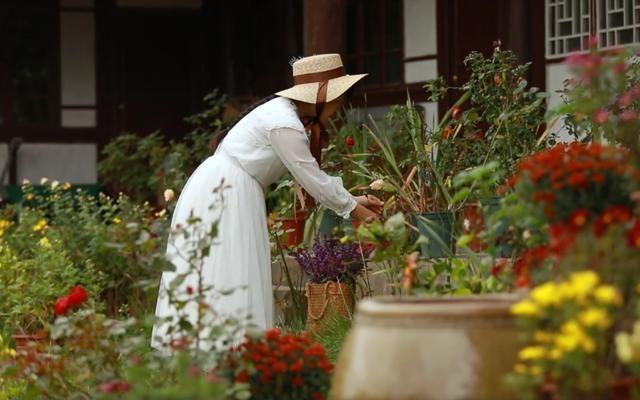 Cuộc sống như mơ của cô gái bỏ bộn bề thành phố về quê làm vườn trồng hoa - 7