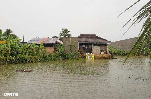 Nha Trang ngập nhiều nơi, bờ sông Cái sạt lở hở hàm ếch - 5