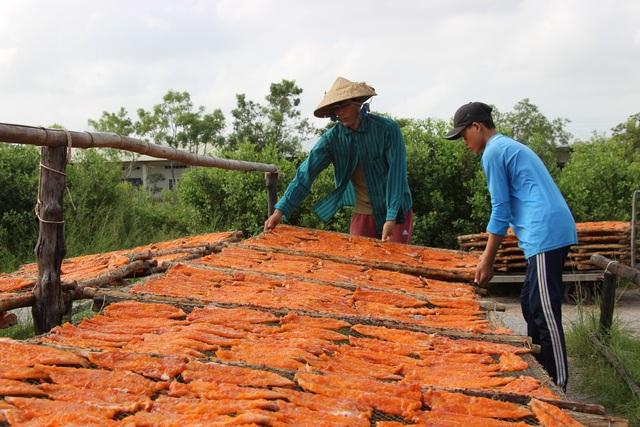 Nghề cá khô ở vùng biển Cà Mau vào mùa đón Tết - 1