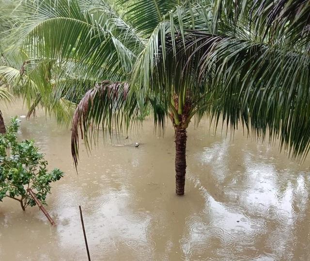 Ninh Thuận mưa lớn ngập lụt nhiều nơi - 1