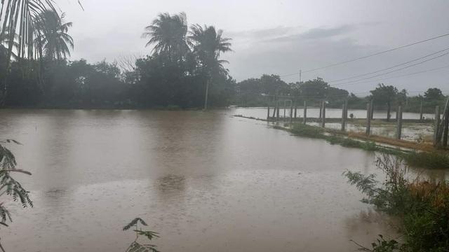 Ninh Thuận mưa lớn ngập lụt nhiều nơi - 3
