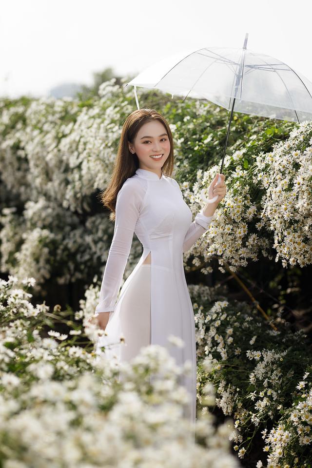 Thiếu nữ Hà thành đọ sắc với loài hoa báo hiệu mùa đông Hà Nội - 1