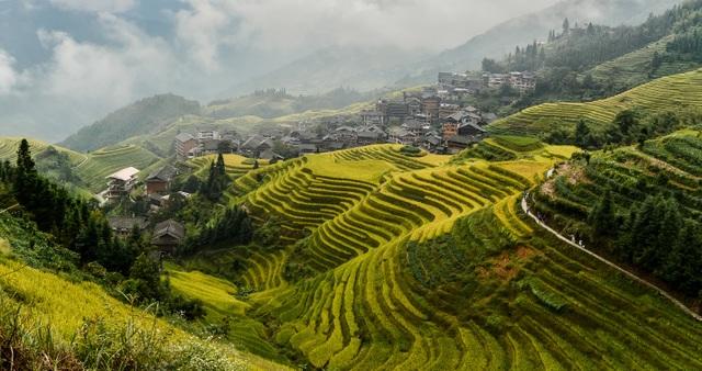 Việt Nam giành giải Oscar của ngành du lịch - 2